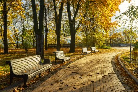 A bench in Autumn season with colorful foliage and trees.