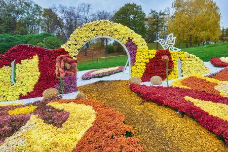 Autumn varicoloured chrysanthemum flower bad striped background 版權商用圖片 - 131364496