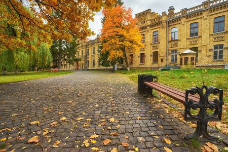 old wooden bench in city park. natural vintage autumn background Stok Fotoğraf