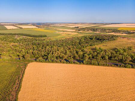 Aerial landscape of summer farm wheat field harvest crops