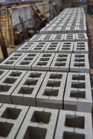 Industrial production of building materials from pressed cement mortar. High quality hollow concrete block or cement brick. Finished products stacked on pallets dry after the press.