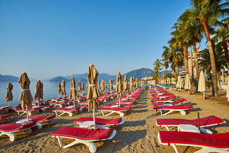 sandy beach without people and with sun loungers, umbrellas, palm trees, Marmaris, Turkey,