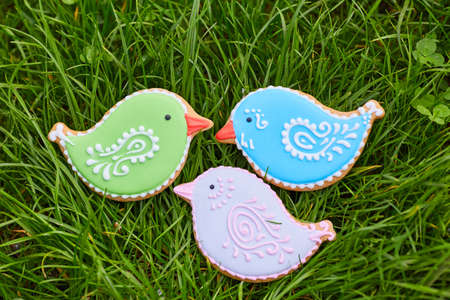 Easter composition with easter cookies rabbits on green grass background. Easter concept with copy space. Flat lay