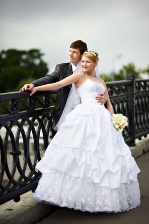 Happy bride and groom at a wedding a walk on bridge Фото со стока