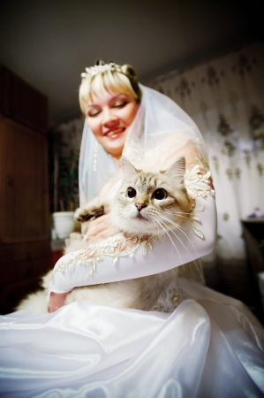 Bride on the wedding day with the cat in the hands Фото со стока