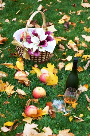 Still life in nature: bottle of brandy, glass, red apples and basket with bouquet of flowers on grass photo