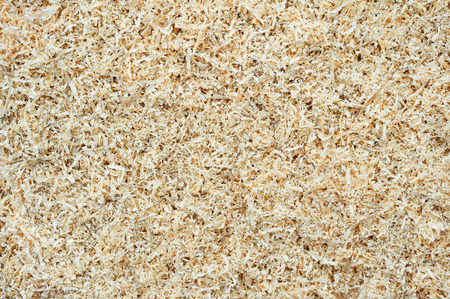 feedstock: Small wood shavings as abstract background