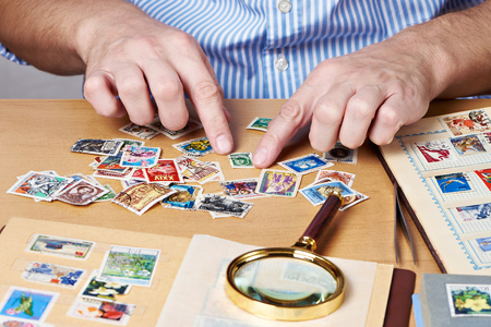 postage stamps: Man watching a collection of postage stamps isolated