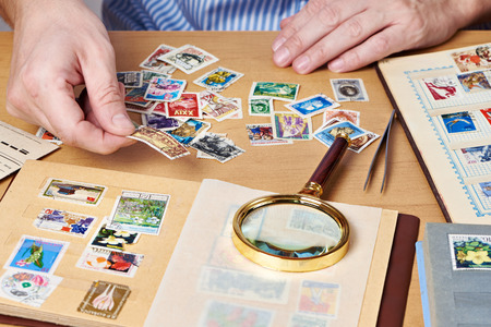Man watching a collection of postage stamps isolated
