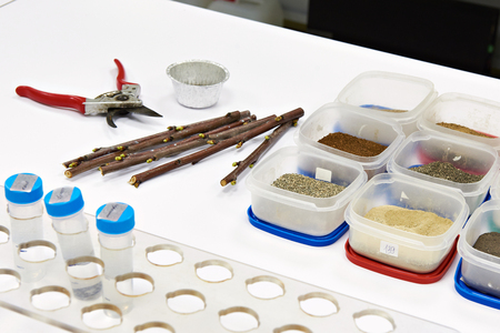 biochemical: Samples for research on white table in biochemical laboratory