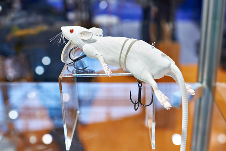 Lure for fishing white mouse in store