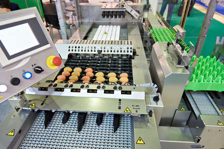 Chicken eggs on a conveyor belt at a food factory Фото со стока