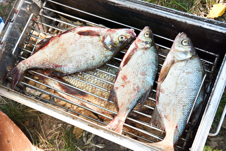 Fishes bream on a lattice in metal smokehouse