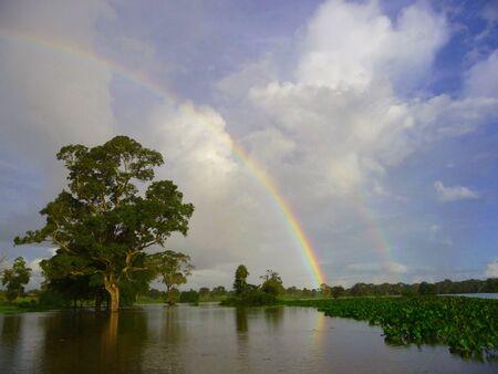 Pantanal; Tree; Rainbow; River; Sky; Wetland; Miranda