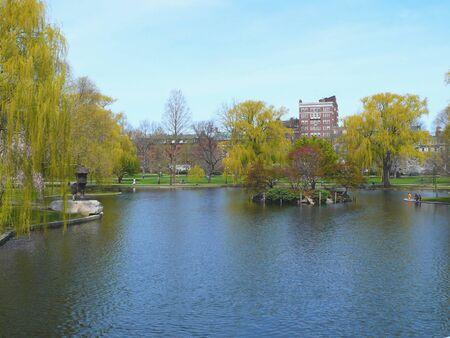 boston common, tourism, tree, nature, landscape, summer, travel