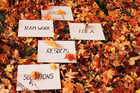 SUCCESS as a team work ,idea, result and solutions on whiteboard on the leaves photo