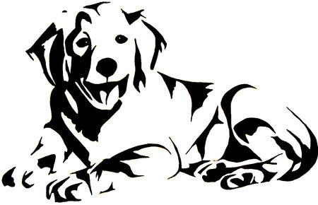 perro labrador: Oro Retrievel