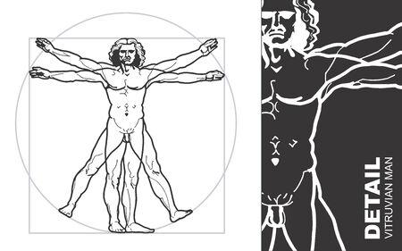 uomo vitruviano: Leonardos Vitruvio Man Vettoriali