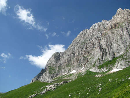 alpine zone: beauty; world; tourism; kinds; a landscapes; plants; a background; a dawn; nature; mountains; top; sky; rocks; a reserved zone; hot summer; green