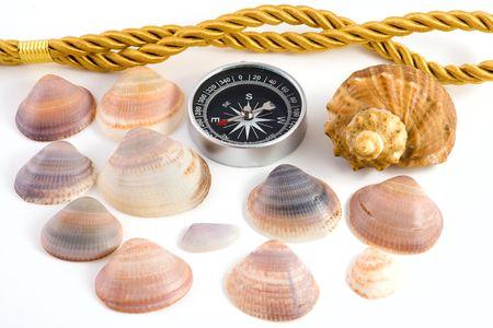 needle lace: Compass and shellfish isolated on white background