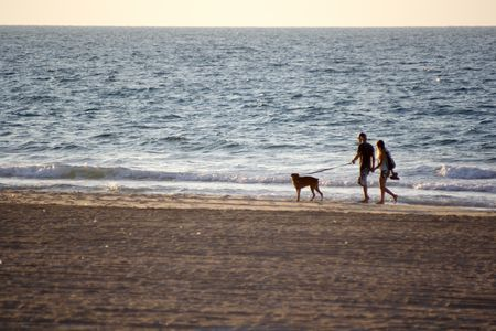 A walk along the sea with dog Stock Photo