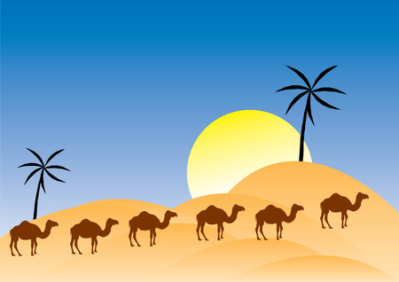wilds: Vector camels in a desert