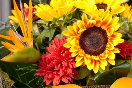 Blossoming sunflowers in bright bouquet