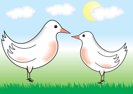Two white birds standing on a grass Vector