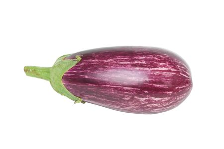 salubrious: Aubergine Zebra isolated on white background Stock Photo