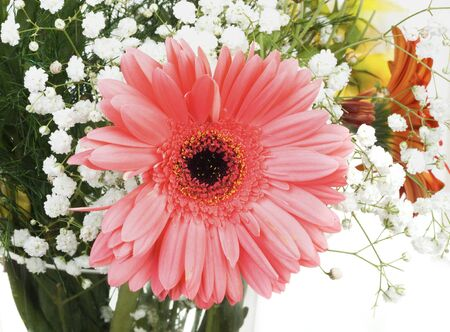 Big pink flower in bouquet isolated on white background Stock Photo - 16951219