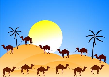 砂漠でのラクダのキャラバン  イラスト・ベクター素材