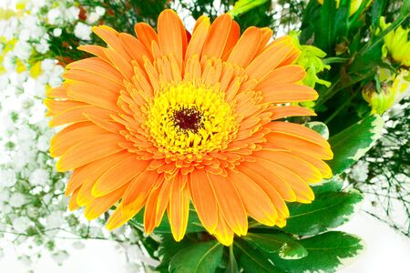 One big orange flower in bouquet isolated on white background Stock Photo - 17595970