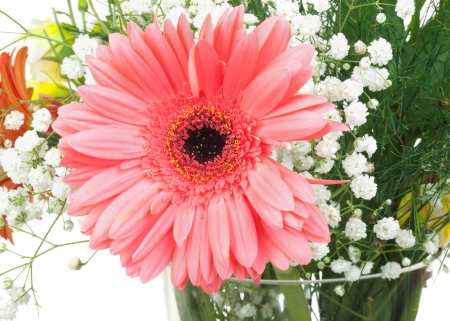 One big pink flower in bouquet isolated on white background Stock Photo - 17933325