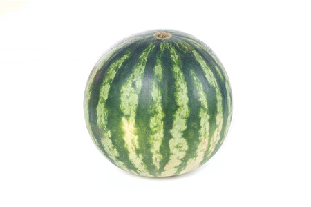 One striped watermelon isolated on white background photo