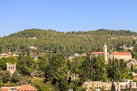 ein: The village Ein Kerem , with belfry of John the Baptist, Jerusalem, Israel