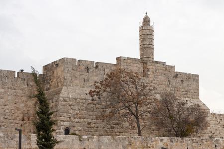 The king David photo
