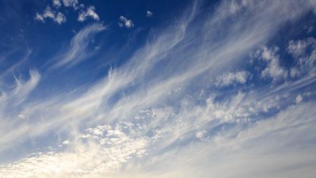 cirrus: Cirrus in a blue sky