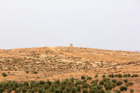 settlements: Sentry box on a hill, next to the olive grove in Israeli settlements