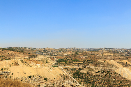 olive groves: Quarry and olive groves near the city of Hebron, Israel