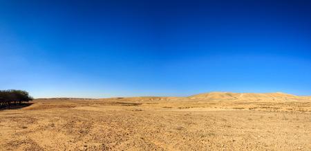Wide panorama of desert Negev at winter
