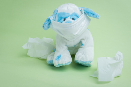 surgical mask: A white and blue stuffed dog wearing a surgical mask surrounded by used tissues representing the idiomatic phrase sick as a dog. Stock Photo