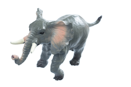 toy elephant: A small toy elephant isolated on a white background.