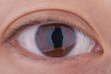 brown eye: A true 1:1 macro shot of a womans brown eye.