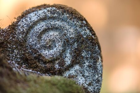 sculpted: A rock sculpted to be shaped like a spiral covered in moss with a smooth orange out of focus background.