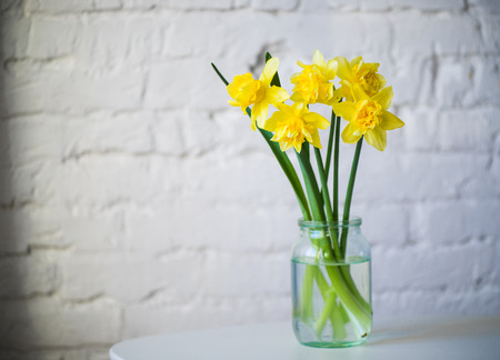 yellow daffodil in glass jar brick wall background Reklamní fotografie