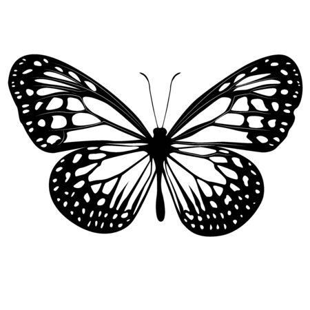 Farfalla clipart in bianco e nero Vettoriali