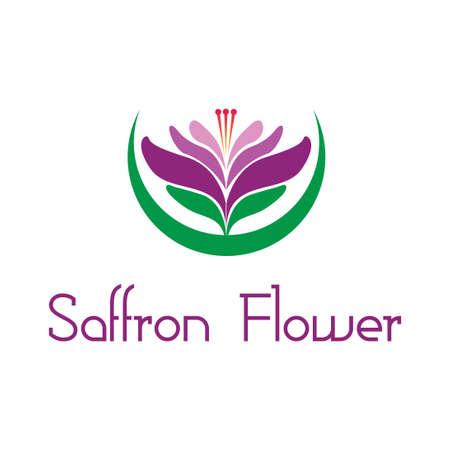 beautiful violet saffron flower logo icon vector template