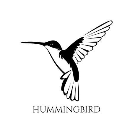 black and white hummingbird vector illustration