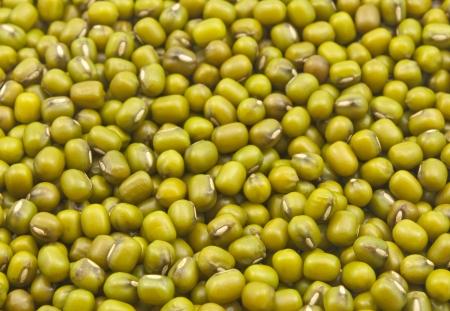 close up of fresh seeds of green gram