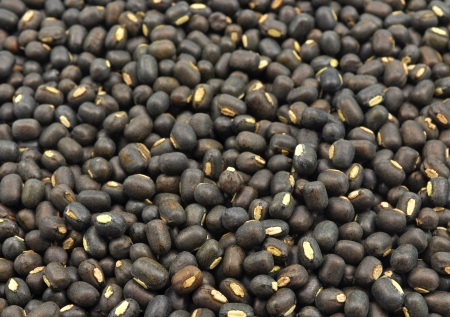 close up of seeds of black gram Stock Photo